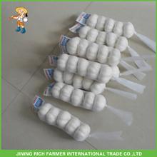 Jinxiang Fresh Pure White Garlic 6.0CM