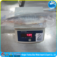 Frozen mackerel (gutted and the gills) fishy sea food