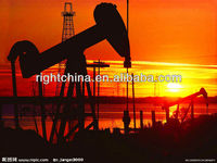 hydrolyzed polyacrylamide for oilfield