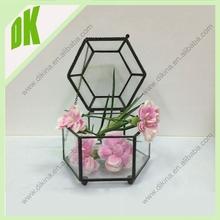 how to make your own terrarium //glass geometric terrarium shop
