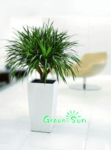 plant pot stick decoration for sale plant pot hot new products for 2015