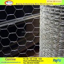 bird cage chicken wire mesh, plastic chicken wire mesh, welded chicken cage wire mesh