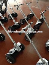 CHIC-LS Promotional Gift Best Knee Scooter, Business Motorcycle Sidecar