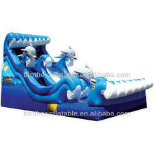 Large Inflatable Water Slide with Pool