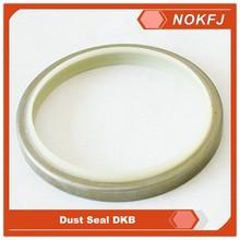 Wiper Seal Series PU+Iron DSI DKB Hydraulic Rubber Seals