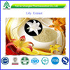 BV Certified GMP&ISO Factory Supply Organic Lily Extract Powder