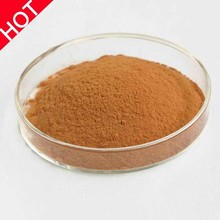 Pure Natural High Quality Pumpkin Seed Extract Powder