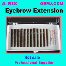 High-grade PBT Eyebrow Extensions In Korea For Daily Life