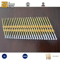 China Alibaba Supplier Worth Buying Fashion Designer 21-Degree Plastic Strip Nails
