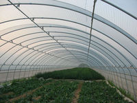 200mic single tunnel greenhouse covered film for vegetable