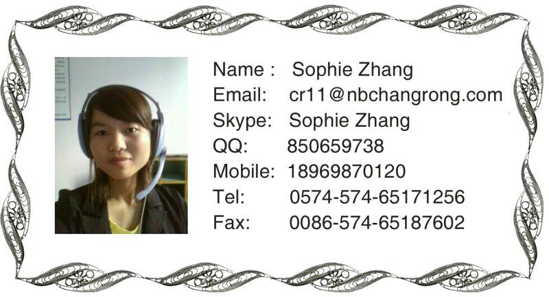 Sophie Zhang .jpg
