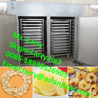 meat dryer/industrial fish drying machine/meat drying machine