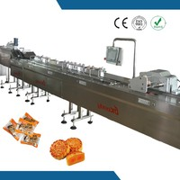 small packet full auto feeding and bagging machine