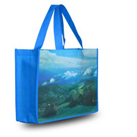 High Quality Non Woven Shoppig Bag