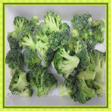 bulk wholesale best quality vegetable and fruit bulk frozen iqf broccoli 3-5cm
