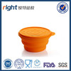 Silicone food container with lid