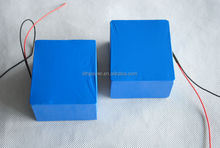 OEM 12v lithium ion battery with 5ah 12v lithium battery pack and 24v lithium ion battery for OEM