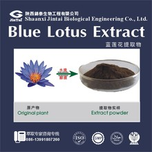 Pure Natural 50:1 100:1 Blue Lotus Flower Extract Powder