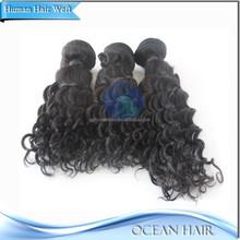 100% Unprocessed High Quality Curly Brazilian Hair Brazilian Loose Curl