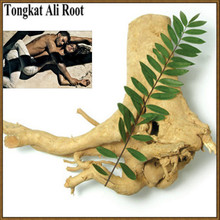 All types of tongkat ali extract powder made in China/sex coffee for men