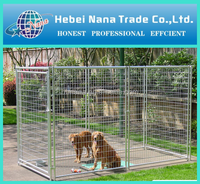 Easy install dog kennel / wire mesh dog cage with factory price