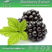 Factory supply Blackberry extract/Anthocyanidins 25%/Blackberry powder/Prevent diabete plant extract