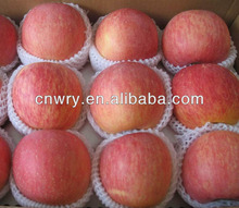 FRESH CHINA FUJI APPLE FOR YEMEN