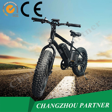 New Style Best selling 20 inch Fat Electric bike