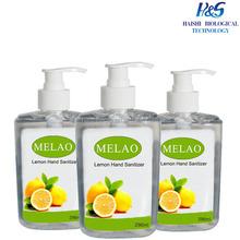 Best Liqiud Killing Germs Cleaning Hand Sanitizer Gel/Hand Rub/Liqiud Hand Foam