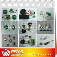 custom programmable voice activated chip for electronic sound products with different function