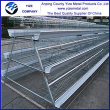 Professional manufacturer hot sales chicken breeding cage hot dipped galvanized with Auto water system
