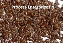 de semillas de lino