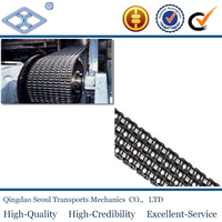 Simplex DoubleTriplex Multiplex pitch 50.8 160 transmission roller chain for petroleum industry