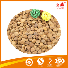 Dried style and raw processing type apricot kernels