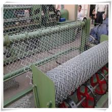 pvc coated triple twist mesh,hexagonal wire netting,poultry netting
