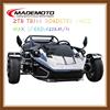 2015 Hot Sale 12V,12AH New ZTR Trike Roadster 250cc / Trike Motorcycle