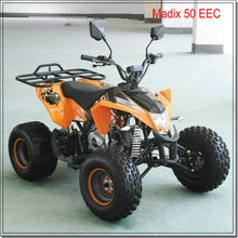 50cc beach buggy from China with EEC certification