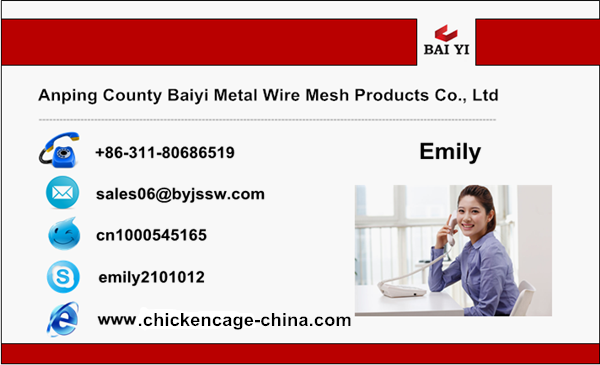 business card_Emily_