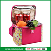 Kids Lunch Cooler Bags Clear Lunch Cooler Bag