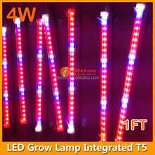 4W led supplemental lamp for hydroponic strawberry seeds and vegging