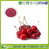 Best Quality 100% Natural VC 17% antioxidant agent acerola cherry powder