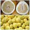 Guangxi pomelo fresh pomelo for sale