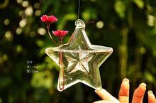Hanging Clear Star shape Glass flower Mini Vase