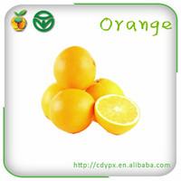 Agricultural Bulk FruitsFresh Navel Orange