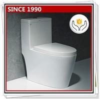 9203 Advanced Flushing System toilet commode