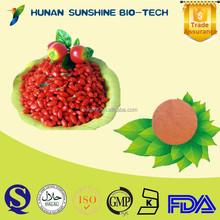 Herbal Medicine Extract Goji P.E. / Barbury Wolfberry Fruit P.E. Strengthen Liver & Kidney & Improve Eyesight