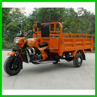 IOS Certification 3 Wheel Trike Cargo Tricycle for Sale