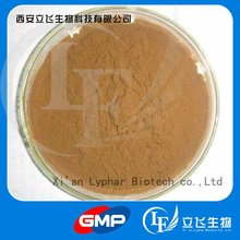 Top Quality Water Soluble Ginkgo Biloba Extract