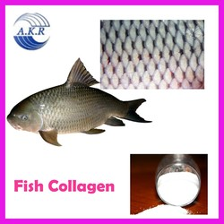 fish collagen marine collagen powder hydrolyzed collagen powder