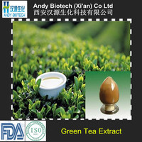 Pure Natural Plant Extract Green Tea P.E. 98% Polyphenols, 80% Catechins, 60% EGCG, 0.5% Caffeine